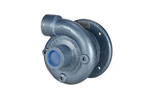CDS John Blue Centrifugal Pumps for Eletric Motors