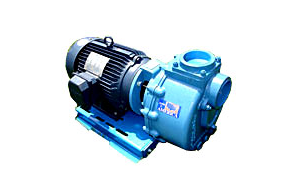 CDS John Blue Centrifugal Pumps to Eletric Motors