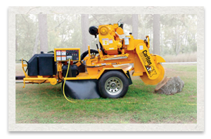 Carlton 3500D Stump Cutter