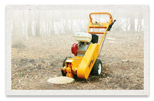 Carlton 900H Series Walk Behind Stump Cutter