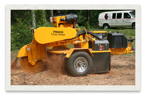 Carlton Model 7500 Stump Cutter