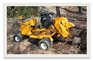 Carlton SP4012 Series Stump Cutter
