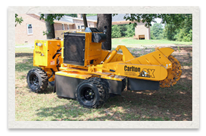 Carlton SP7015 Series Stump Cutter