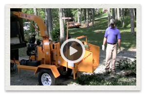 video of the Carlton Model 660 Disk Chipper being used