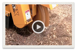 video of the Carlton Model SP4012 Stump Grinder being used