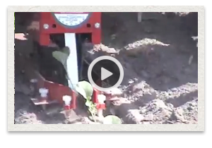 video of the Mechanical Transplanter 5000