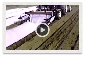 video of the Mechanical Transplanter Model 95